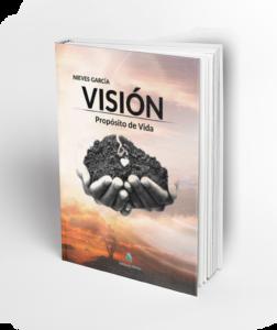 VISION-nieves-png-1